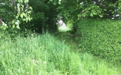 Naturräume erhalten, Flächenverbrauch mindern