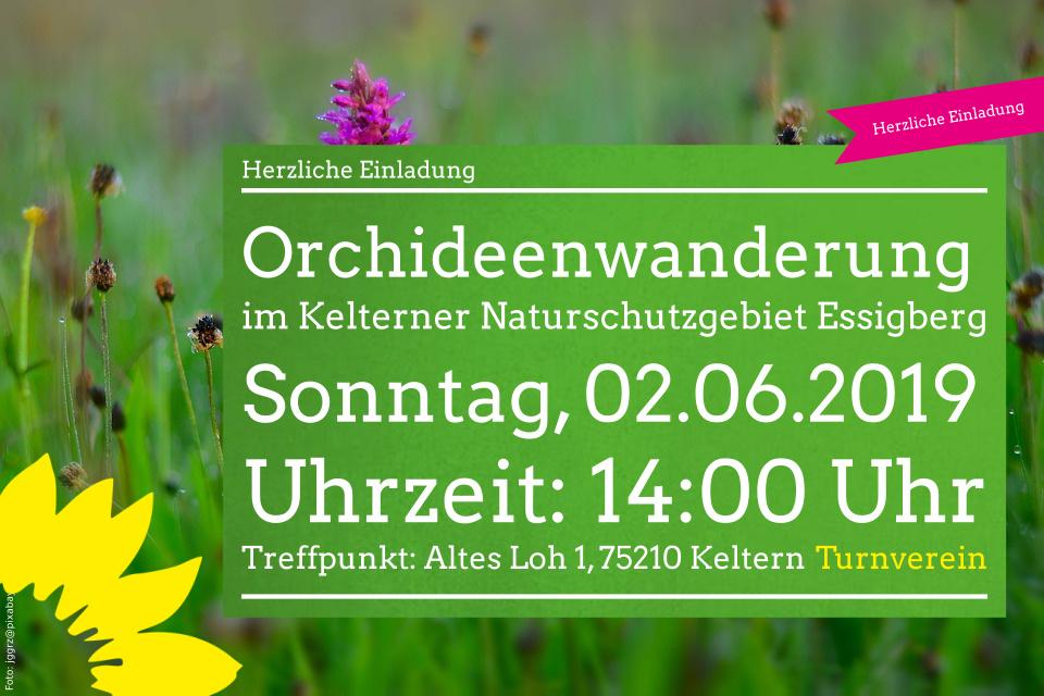 Orchideenwanderung im Kelterner Naturschutzgebiet Essigberg
