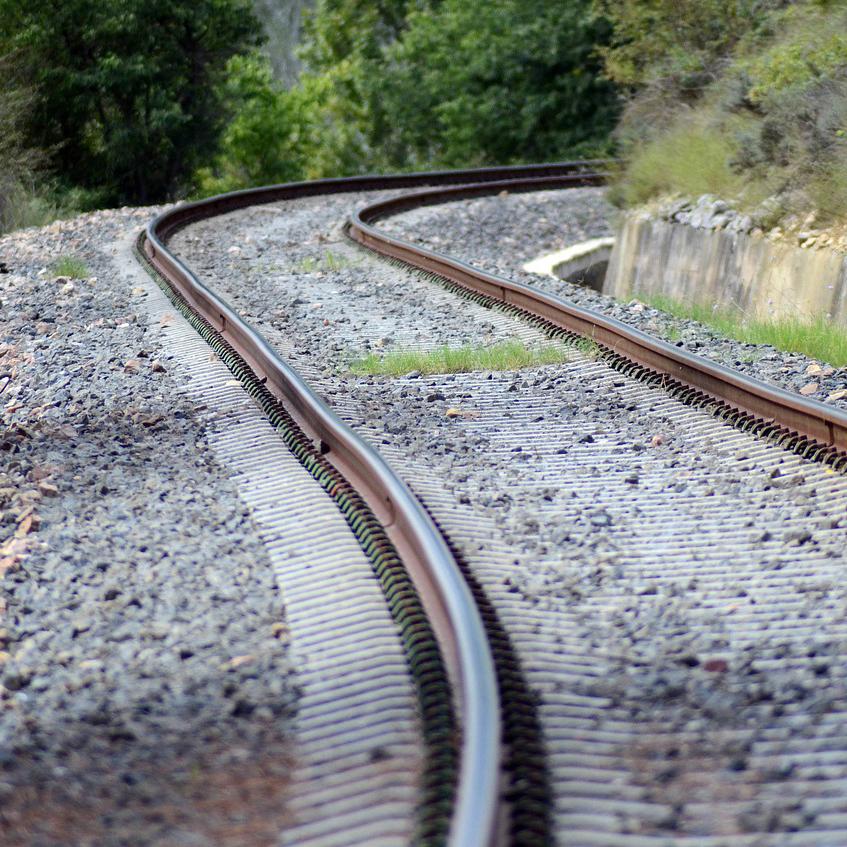 Bahngleise führen durch die Natur