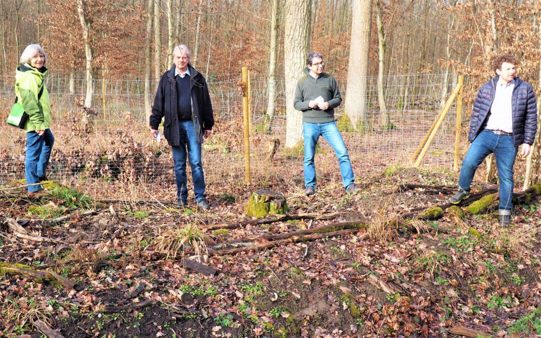 Besuch des Knittlinger Eichenwalds mit Dr. Andre Baumann